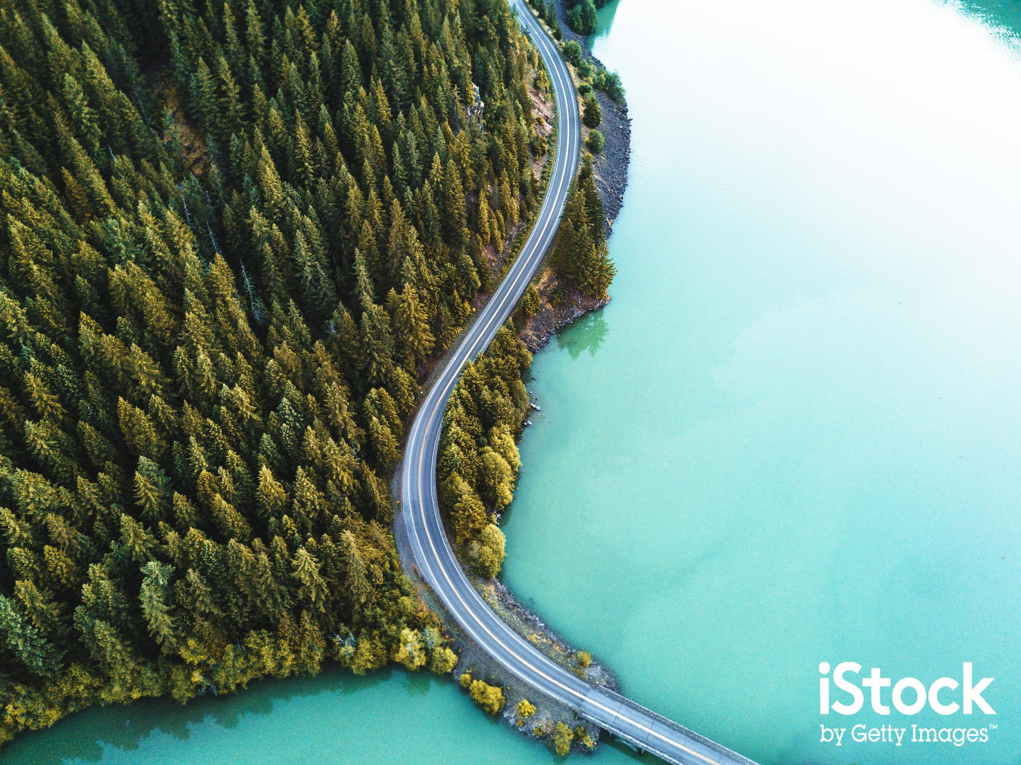 Stunning aerial view of road, forest and sea