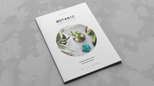 Best brochure templates: multipurpose creative