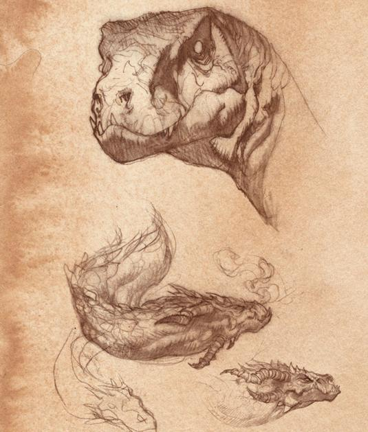 sketches of reptiles and dinosaurs