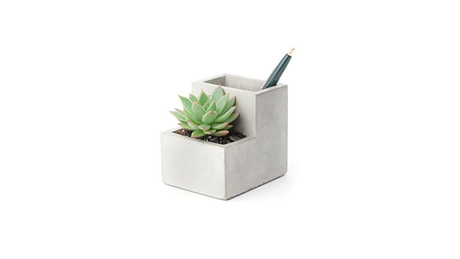 Kikkerland Concrete Desktop Plant and Pen Pot