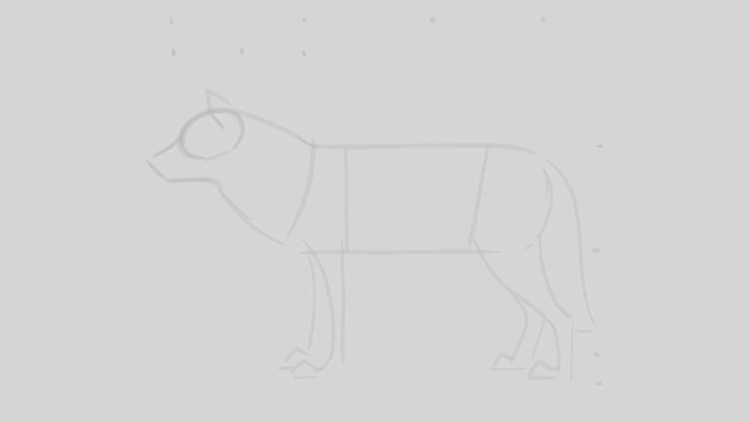 Sketched outline of a wolf