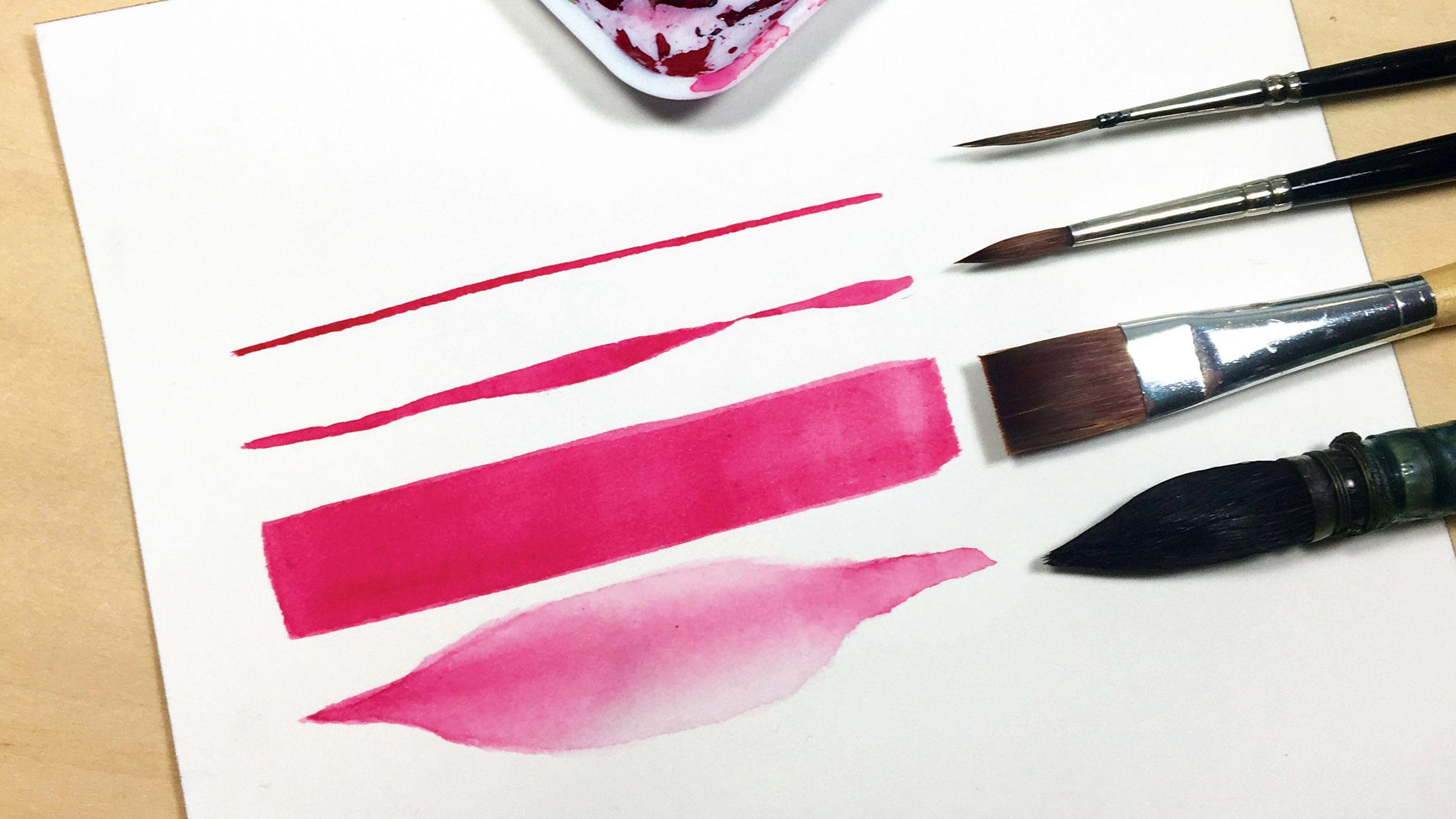 Four different watercolour brushes next to the type of stroke they make
