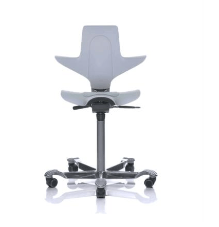 HAG Capisco Puls 8010 ergonomic office chair