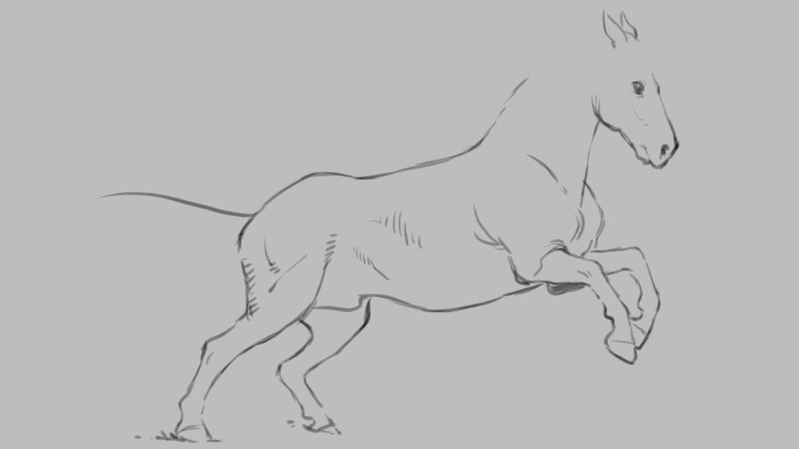 A fine-line drawing of a horse with no detail, shading or hair