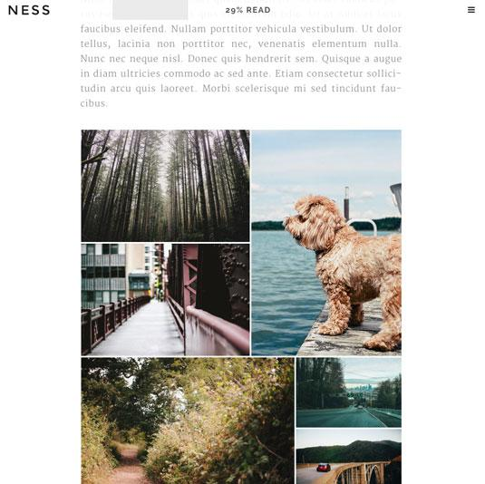Website templates - Ness