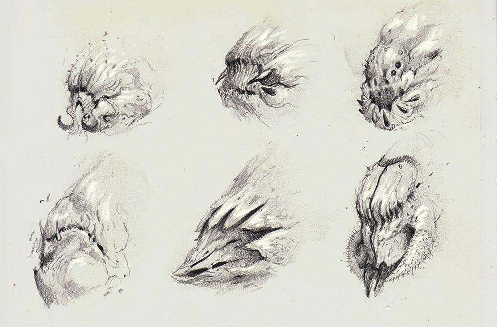 sketches of heads