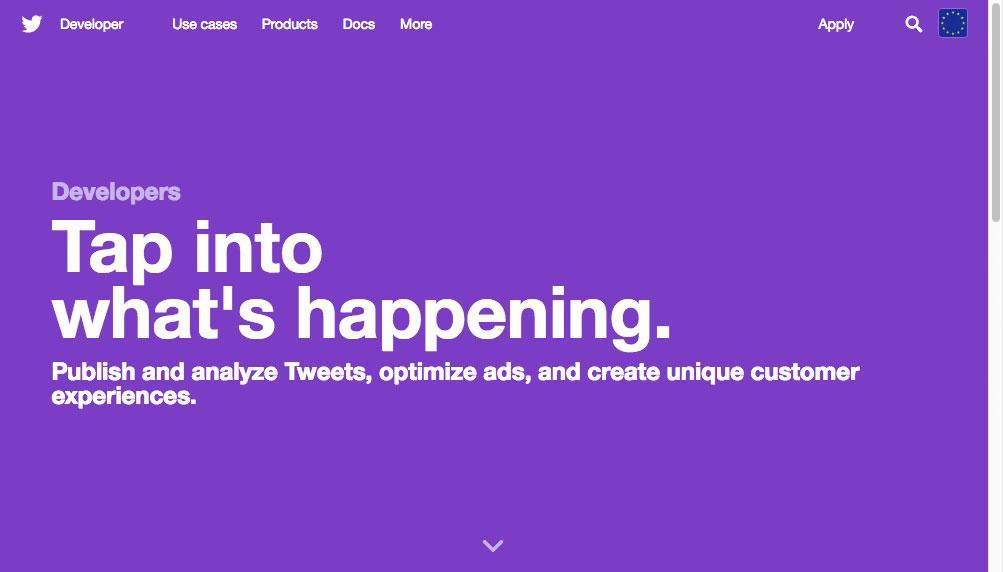 Twitter developer homepage