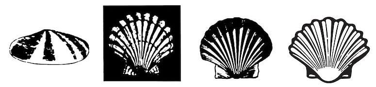 Evolution of Shell logo