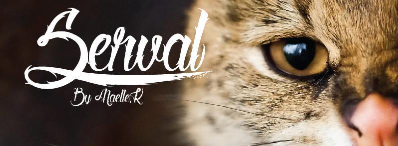 Tattoo fonts: Serval